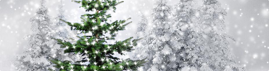 Udekorowana choinka pokryta śniegiem