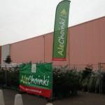 Drzewka AleChoinki wystawione przed sklepem